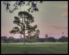 Red-Skies-over-Audubon (Ray Devlin) Tags: uptown new orleans magazine street magazinestreet golf course sunset nikon d300