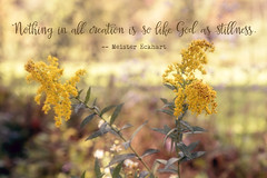 Be Still (Singing Like Cicadas) Tags: 2016 autumn october westvirginia goldenrod outdoors nature text quote onethousandgifts tuckercounty appalachia afternoon