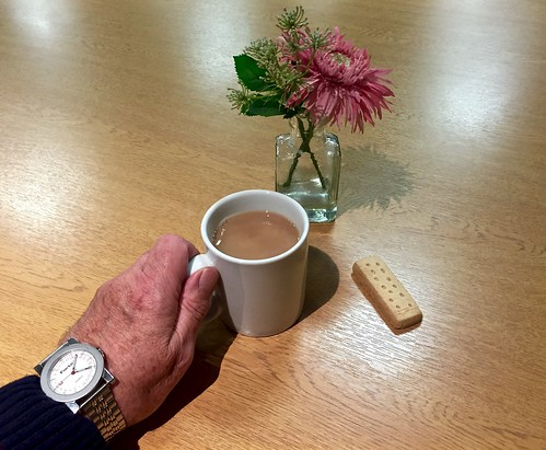 Tea & a biscuit 200-365 (10)