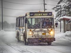 Orion CBJ 6225 (Gillfoto) Tags: orion bus transit busstop winter alaska juneau publictransport snow powerpoles