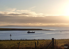 A Fish-Farm Workboat Leaving Houton Bay (orquil) Tags: workboat boat leaving houton bay seaside calm blue sea quiteearly morning shoreline silhouette foreground field fencing navigationbeacon background scapaflow seascape sheltered anchorage barrelofbutter skerry distant southisles sunlit clouds skyscae sunny november autumn sunshine orkney islands scotland uk unitedkingdom greatbritain orcades scenic interesting maritime view colourful westmainland