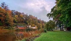 Durham, river walk. (Tractorboy1981) Tags: durham uk england river wear landscape autumn fall leaves golden brown trees clouds d7100 building