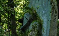 Stone Buddha  at Tokyo Nezu-Museum garden(2) (sapphire_rouge) Tags: mossy    moss sculpture    nezumuseum  japaneseart  buddha  smaile tokyo archaic buddhiststatue japanesegarment   art   japan statue aoyama innercity   museum shrine temple