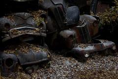 Sprinkled #1 (Eirik0304) Tags: edrussellroberts nikon nikond800 tamron 1735f284 bstns ivanssonsbilskrot dereliction decay ruraldecay autumn automobiles cars sweden