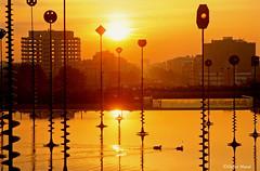 Le bassin Takis au lever du soleil (didier95) Tags: paris leverdesoleil architecture jaune eau ladefense reflet bassin bassintakis orange