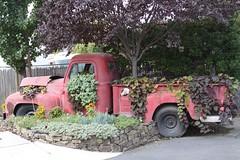 Vintage Truck Planter (irecyclart) Tags: planter pots vintage