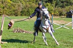 Cavalry Demonstration (rmssch89) Tags: history oldbethpagevillagerestoration reenactment display war military militia demonstration nassau newyork cavalry course horse
