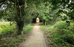 25319 (benbobjr) Tags: lincoln lincolnshire midlands eastmidlands england english uk unitedkingdom gb greatbritain britain british vikingway viking way lincolncliff lincolnedge edgecliff lincolnridge withamvalley bracebridgeheath park urbanpark path pathway bridleway publicfootpath