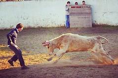 J imaginaste o que se sente neste momento?  #touradas (Protoiro) Tags: touradas protoiro tauromaquia toros bullfight