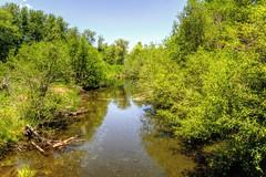 Taylor Creek  (Explore 11/12/16  #158) (Joe Lach) Tags: taylorcreek creek stream river trees water waterpictorial laketahoe california eldoradocounty eldoradonationalforest joelach explore