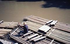 Row row row your boat (denise yeap) Tags: 135 bamboo rafting chiangmai travel analogue analog film adventure colours thailand roadtrip kodak ektar100 fujifilm klasses tinypeople