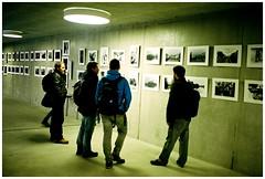 Expo de Pierre (Bokey Shutter) Tags: leicam2 ultron portra160 suisse