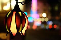 Bohemian (Foodo Dood) Tags: fujifilm xt1 35mm sf alley lantern bokeh prettylights vesuvio northbeach