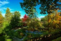 inizio autunno (akabolla) Tags: lucca toscana autunno fall autumn ortobotanico