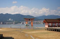 Classic view of the tori (iorus and bela) Tags: bela iorus japan 2016 holiday vakantie hiroshima miyajima itsukushima shrine