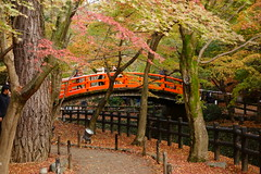 DSC02803 (MrSUIZOU) Tags: 京都 紅葉 北野天満宮 平野神社 十月桜