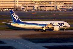 JA805A Boeing 787-8 ANA  HND (Jetstar31) Tags: ja805a boeing 7878 ana hnd