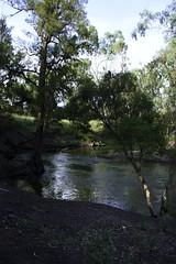 20120111 - Emerald Weir and Botanic Garden-104 (Otto_G) Tags: river queensland emerald wier bottomwier