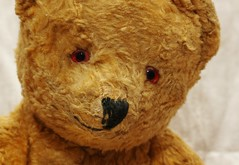 """I love you too!"" (Hannhell) Tags: old cute vintage teddy 1950s teddybear lovehim explored"
