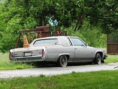 A FADED CADILLAC COUPE DEVILLE IN MAY 2013 (richie 59) Tags: auto usa cars overgrown grass car america outside us weeds rust automobile gm unitedstates antiquecar rusty cadillac driveway faded chrome rusted vehicle cadillacs flattire newyorkstate autos oldcar frontyard oldcars coupe automobiles taillights rustycar backend wornout nystate coupedeville rustyoldcar americancars generalmotors hudsonvalley cadillaccoupedeville antiquecars 2door americancar motorvehicles fadedpaint ulstercounty twodoor motorvehicle vinyltop uscar uscars midhudsonvalley 2013 oldrustycar ulstercountyny oldcadillac gmcar gmcars cadillaccoupe 2010s potamkin oldcoupe oldcadillacs rustycadillac 1980scar 1980scars richie59 may2013 townofmarlboroughny townofmarlborough oldcoupedeville may252013 potamkincadillac