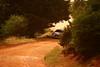 IMG_9445-2 (Ploigos) Tags: rally greece wrc acropolis motorsports kefalari citroends3wrc acropolisrally2013