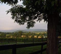 Vineyard at dusk (cizauskas) Tags: virginia winery berryville clarkcounty shenendoa veramar