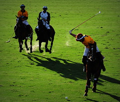 117th Hurlingham Club Open Championship, Argentina / 117 Abierto de Hurlingham YPF () Tags: travel vacation portrait horse holiday man argentina argentine leather cheval buenosaires nikon boots pony portraiture ba 70300mm polo rtw pferd vacanze tack hest porteos roundtheworld paard triplecrown  polopony globetrotter polomatch  poloclub argentinien  hurlingham equidae onhorseback polofield zonea hurlinghamclub leatherboots worldtraveler  ariannin repblicaargentina laaguada  chukkas  argentinidad pologame poloteam ladolfina   d700  zonaa nikond700 chukkers abiertodehurlingham  triplecorona 117thhurlinghamopen hurlinghamopen  chukers tradiciondelpoloargentino