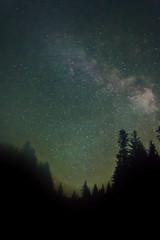 Milky Way over trees (Brook Terwilliger) Tags: trees sky fog night oregon way stars long exposure brook milky starry terwilliger