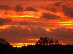 IMG_8808 Sonnenuntergang (Traud) Tags: sunset orange silhouette germany bayern deutschland bavaria sonnenuntergang laufen
