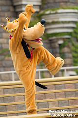 "Soryo Kobu ""The Embu"" (Bevelle Macalania) Tags: tokyo disneyland 日本 the embu 千葉県 soryo kobu 浦安市"