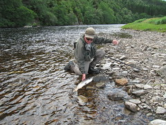 Geff Adams with a nice one from Upper Sgolbach on the Oykel.