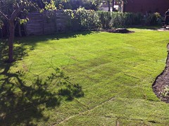 """Turfing - finished result just after being layed • <a style=""""font-size:0.8em;"""" href=""""http://www.flickr.com/photos/72072497@N07/9502985872/"""" target=""""_blank"""">View on Flickr</a>"""