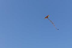 IMG_0631 (liberoilverso) Tags: canon eos cielo azzurro ragusa particolari particolare luoghi aquilone montalbano donnalucata 1100d
