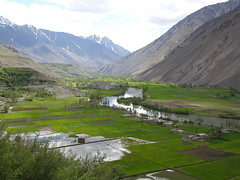 Pak_071 Yasin to Shandur (Roger Nix's Travel Collection) Tags: pakistan nwfp northwestfrontier chitral ghizer ghizar