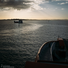 cat and mouse (terry wood Photography) Tags: light sea clouds cat sunrise boats mouse peace ships floating tranquility fujifilm relaxation shipping streaming peacefulness earlymornings terrywoodphotography x100s