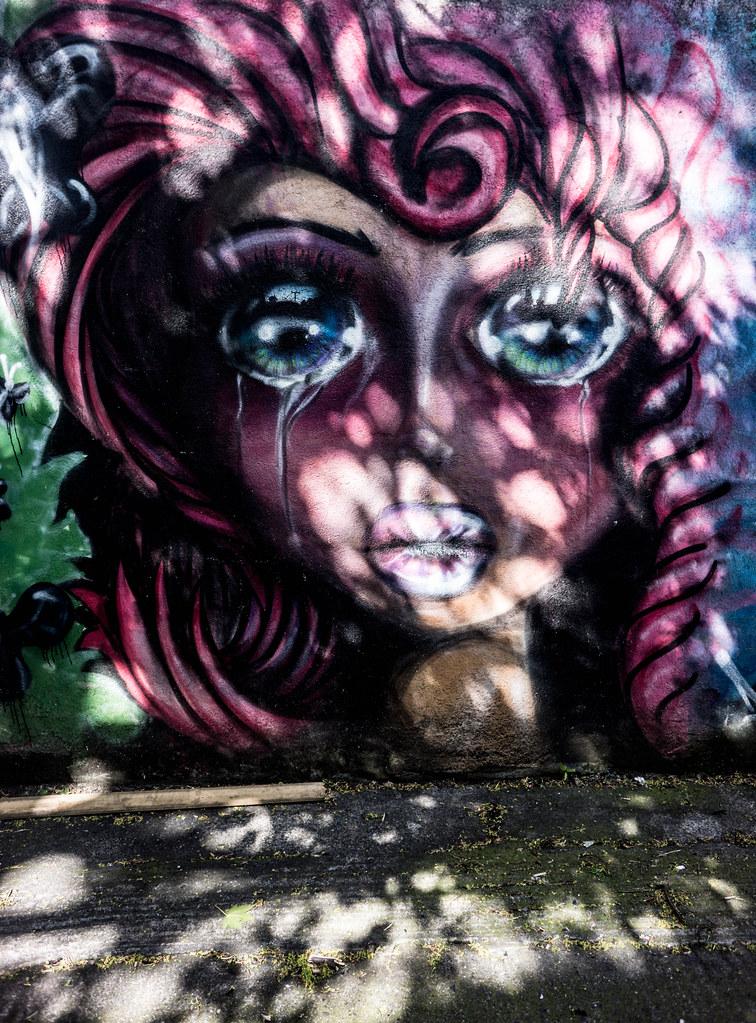 STREET ART IN DUBLIN - CABRA PARK URBAN GALLERY [A REALLY UGLY LANE]-104074