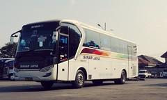 Po. Sinar Jaya (Agung Nirwan Aprianto) Tags: bus indonesia community terminal jakarta hino laksana sr2 pulogadung sinarjaya karoseri bismania legacysky rn285 allnewlegacysky