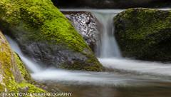 Long exposure of a small stream seen along the Roaring Forks Motor Nature Trail (Alaskan Dude) Tags: travel nature landscape nationalparks smokies greatsmokymountainsnationalpark