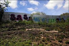 Panik / T32 / B6K / Fat (Alex Ellison) Tags: urban graffiti boobs railway ab kc graff 32 trackside northwestlondon opd t32 temp32 b6k
