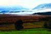 Murnauer Moos (murnau_am_staffelsee) Tags: riegsee blauesland landkreisgarmischpartenkirchen landwirtschaft herbst murnauamstaffelsee bayern ger