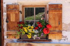 Val Gardena (stgio) Tags: mountains colorful dolomiti valgardena flowers summer