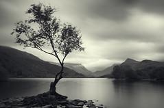 Llyn Padarn long exposure (Paul Heester) Tags: llynpadarn llyn wales lake longexposure nd110 canon 60d