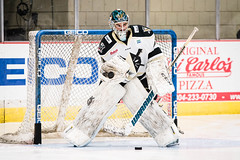 "Nailers_K-Wings_11-6-16-0035 • <a style=""font-size:0.8em;"" href=""http://www.flickr.com/photos/134016632@N02/30206219203/"" target=""_blank"">View on Flickr</a>"