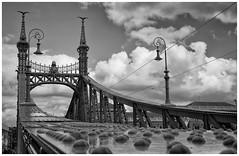 Puente de la Libertad (Guillermo Relao) Tags: puentedelalibertad budapest hungra hungary guillermorelao nikon d90 blancoynegro byn bw blackandwhite danubio szabadsghid