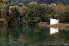 Estany de Banyoles (Gatodidi) Tags: estany banyoles girona lago baolas garrotxa pesqueres porqueres barcas patos agua estanque reflejos catalua catalunya spain espaa paisaje paisatge landscape nikon d90