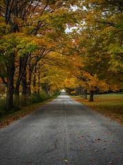 Country Road - Fall Colors (Frank Cardoze) Tags: doorcounty olympus omd em5 markii fall zuiko 1240 colors wisconsin countryroad