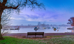 Mist at the harbour (Anthony White) Tags: weather harbour christchurch gb uk riverstour tree mist misty nopeople dorset sonyalpha bench still winter unitedkingdom riverhouse