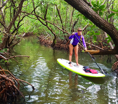 10_18_16  Lido Key paddleboard Tour 04