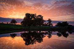 just wonderful sunset (Pastel Frames Photography) Tags: sunset kildare ireland carton house reflections trees water lake amazing sky clouds colours canon5dmark3 canon 2470 mm stillness nature outdoors travel discover sightseeing silouette