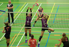 1B260955 (roel.ubels) Tags: vv utrecht eurosped galgewaard volleybal volleyball 18 finale nationale beker